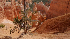 Bryce Canyon National Park: American West, Utah Red Rock - stock footage
