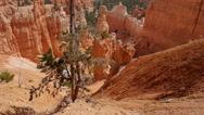 Stock Video Footage of Bryce Canyon National Park: American West, Utah Red Rock