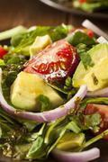 Organic green avacado and tomato salad Stock Photos