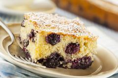 homemade blueberrry coffee cake - stock photo