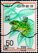 Japan - circa 1977: a stamp printed in japan shows rhacophorus arboreus, circ Stock Photos