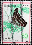 Japan - circa 1977: a stamp printed in japan shows graphium dosun albidum, ci Stock Photos