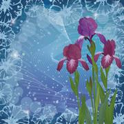 Flowers iris for holiday design Stock Illustration