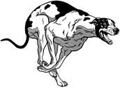 Stock Illustration of running greyhound black white