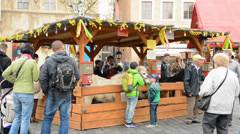 Stock Video Footage of APRIL 2014 - Easter markets - exhibition of animals with people