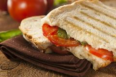 homemade tomato and mozzarella panini - stock photo
