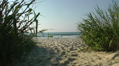 Path through sea grass to the North Carolina beach Stock Footage