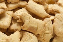 crunchy lemon animal cracker cookies - stock photo