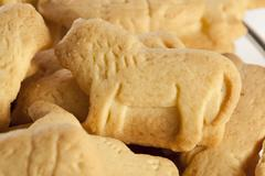 Crunchy lemon animal cracker cookies Stock Photos