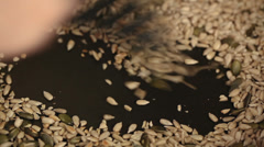 Sunflower and pumpkin seed toasting in pan Stock Footage