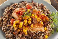 southwestern chicken with rice and corn - stock photo