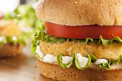 breaded chicken patty sandwich on a bun - stock photo