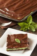 homemade chocolate and mint brownie - stock photo