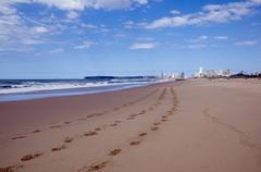 Footprints in sand with city in distance Stock Photos