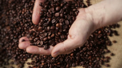 0330 Adult man hands holding coffee grains - stock footage