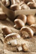 Organic brown baby bella mushrooms Stock Photos