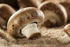 organic brown baby bella mushrooms - stock photo