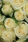White roses in a wedding arrangement Stock Photos
