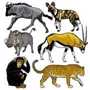Set with animals of africa Stock Illustration