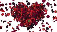 Stock Video Footage of Animated 3D heart from berries.