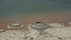 Stromatolites, lake thetis, cervantes, australia Stock Footage