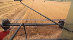 Harvesting barley combine in cabine Stock Footage