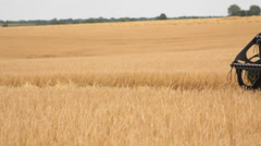 Harvesting barley combine - stock footage