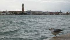 0328 Venice, high water, acqua alta. Stock Footage
