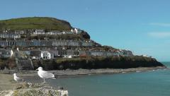 View onto New Quay, Wales Stock Footage