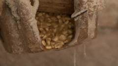 The corn kernels fall to the millstone Stock Footage