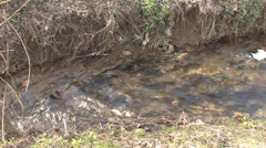 Water mill stream Stock Footage