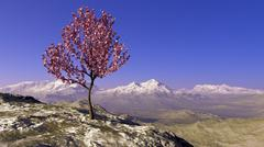 Cherry tree on a hill on a background of snow-capped mountains Stock Illustration
