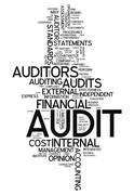 "word cloud ""audit"" - stock illustration"