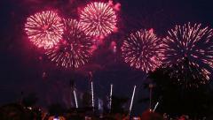 spectators watching fireworks - stock footage