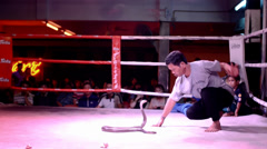 Stock Video Footage of Thailand, Pattaya, February 2014, snake charmer