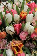 Spring bouquet in bright colors Stock Photos