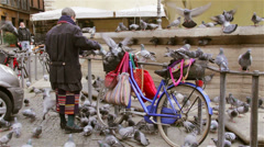 Pigeon's crowd eating on a bike in the city center Stock Footage
