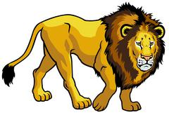 Lion Piirros