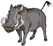 warthog - stock illustration