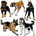Stock Illustration of set with dog breeds