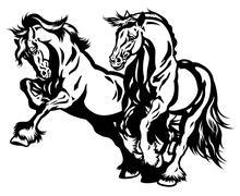 two draft horses black white - stock illustration