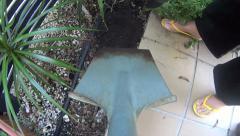 Digging Soil In Planter Pot POV Stock Footage