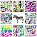 Stock Illustration of colorful abstract illustration set of zebra pattern