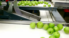Apples in a Packing Plant Stock Footage