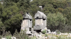 Ancient tombs in forest - stock footage