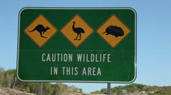 Car passes wildlife traffic road sign, kangaroo, emu, echidna, wa, australia Stock Footage