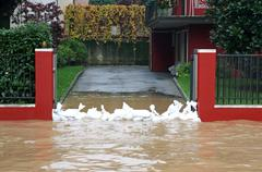 entrance of the house with a bunch of sandbags in defense during the flood - stock photo