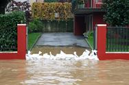 Stock Photo of entrance of the house with a bunch of sandbags in defense during the flood