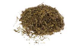 dry wort - stock photo