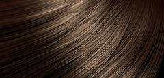 Stock Illustration of brown hair blowing closeup
